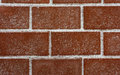 Free Brick Masonry. Royalty Free Stock Images - 23653269
