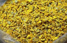 Free Dried Daisy Royalty Free Stock Image - 23654296