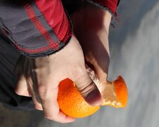 Free Peeling An Orange Stock Photo - 23659750