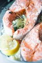 Free Boiled Salmon Fillet Stock Image - 23664851