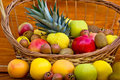Free European Fruits And Tropical Fruits Royalty Free Stock Photos - 23669968
