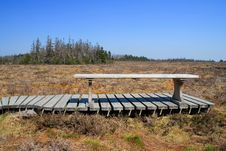 Free Bench On The Bog Stock Photo - 23660930