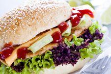 Burger Close Up Royalty Free Stock Photo