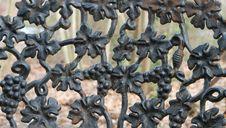 Free Iron Grapes Royalty Free Stock Photos - 23679438