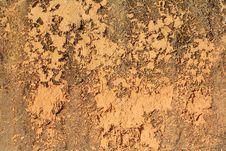 Free Grunge Soil Wall Royalty Free Stock Image - 23684806