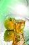 Free Apple Juice Stock Photo - 23694530