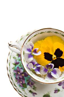 Free Pretty Tea Royalty Free Stock Photos - 2370048