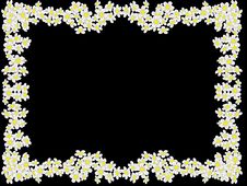 Free Frame From White Flowers Stock Photography - 2372242