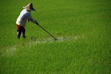 Free Farmer Cutting Grass Stock Photos - 2375113