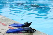 Free Swim Fins Stock Photo - 2375700