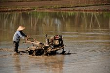 Free Plough Machine And Paddy Field Royalty Free Stock Photos - 2375768