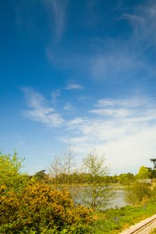 Free Lovely Sky At Trentham Stock Images - 2378804