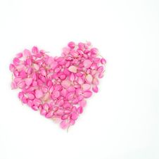 Free Pink Flowers Heart Shape Royalty Free Stock Photo - 23709435