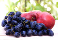 Free Fresh Grapes Royalty Free Stock Images - 23723409
