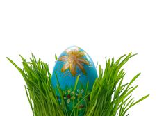 Free Easter Egg In Green Grass Royalty Free Stock Photos - 23725538