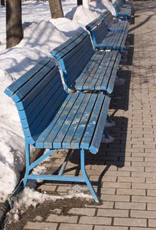 Free Line Of Blue Benches In Winter Park Stock Images - 23728834