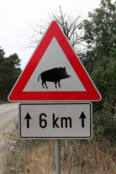 Caution Wild Boar Road Sign Stock Photos