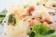 Free Closeup Chicken Caesar Salad Royalty Free Stock Images - 23732079