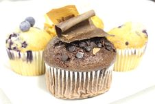 Free Chocolate Chip Muffin Stock Photography - 23733602
