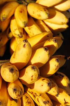 Free Banana Royalty Free Stock Photography - 23735487