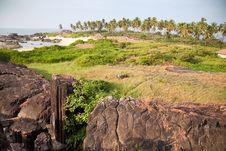 Free Beautiful Beach Of Ocean Stock Image - 23735691