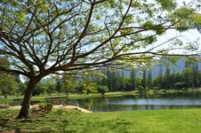 Free Beautiful Park In Phangnga,Thailand Royalty Free Stock Images - 23743909