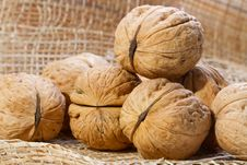 Free Walnuts Royalty Free Stock Photos - 23746698