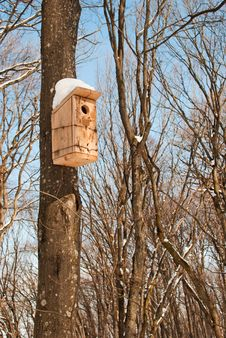 Free Birdhouse In Winter Park Stock Images - 23752994