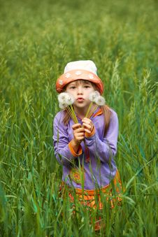 Free Little Girl Looking Through The Dandelions Royalty Free Stock Image - 23753806