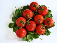 Free Tomatoes On Bed Of Spinach Stock Image - 23754241