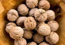 Free Walnuts Stock Photo - 23755930