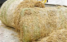 Free Bale Of Hay Royalty Free Stock Photos - 23760398