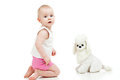 Free Adorable Baby With Soft Toy Dog Stock Photo - 23783410