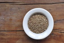 Free Buckwheat Corns Stock Image - 23781221