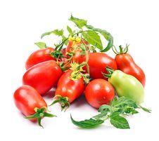 Free Tomatoes Royalty Free Stock Photos - 23784898