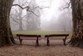 Free Benches Stock Photography - 23791032