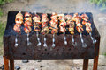 Free Barbecue Meat Royalty Free Stock Photography - 23793537