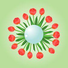 Free Red Tulips Illustration Stock Image - 23798261