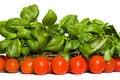 Free Tomato And Basil Royalty Free Stock Photo - 2388195