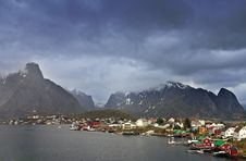 Free Reine Royalty Free Stock Image - 2386136