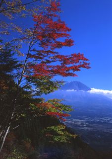 Free Mount Fuji XIII Royalty Free Stock Image - 2386486