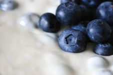 Free Blueberries Royalty Free Stock Photo - 2387715