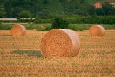Free Golden Hay Bales Stock Images - 2388404
