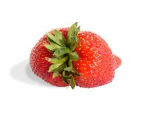 Free Strawberry Stock Photos - 2388883