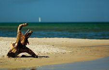 Free Baltick Sea Stock Image - 2389111