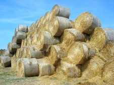 Free Giant Stack Of Rolled Hay Bale Royalty Free Stock Images - 2389399