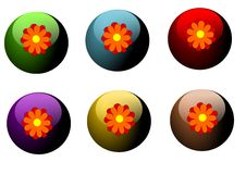 Free Flower Buttons Stock Images - 23823174