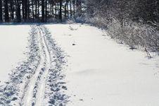 Free Ski Winter Road Royalty Free Stock Images - 23824169