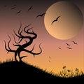 Free Black Tree Royalty Free Stock Image - 23839866