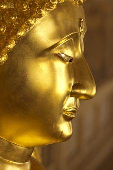 Free Buddha Royalty Free Stock Images - 23833809